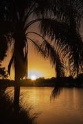 25th Nov 2020 - Campground sunset.