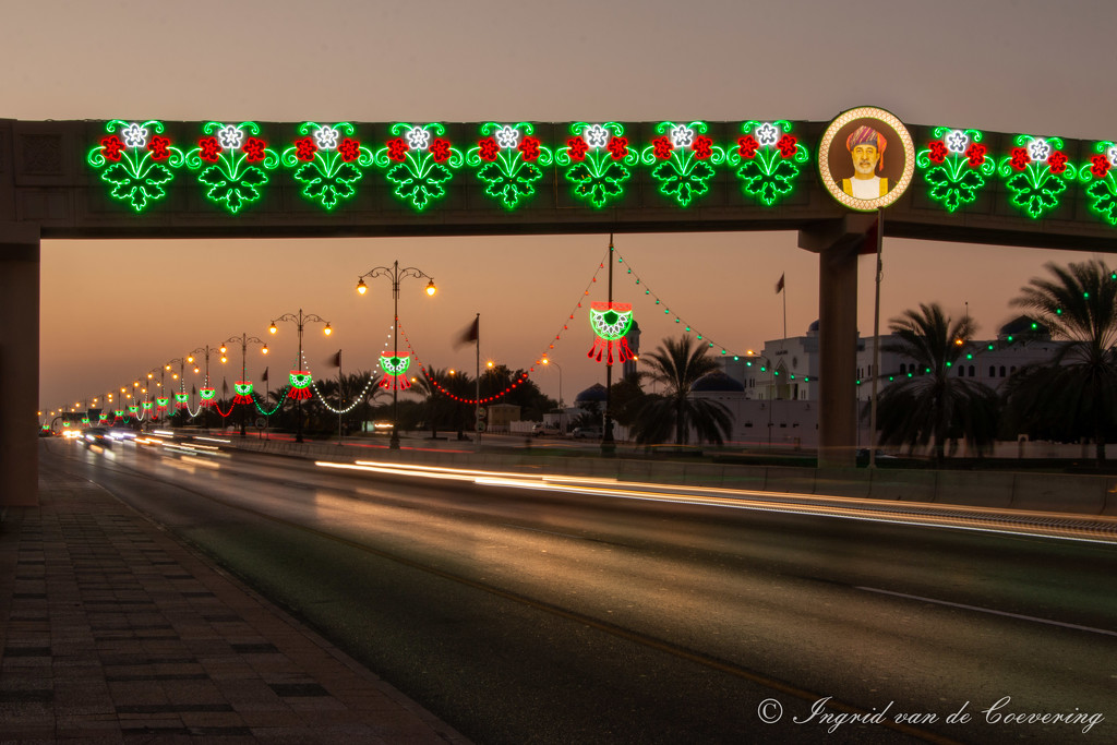 The 2nd pedestrian bridge  by ingrid01