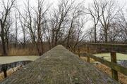26th Nov 2020 - guardrails on the bridge