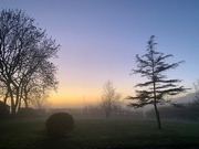 26th Nov 2020 - A foggy evening.