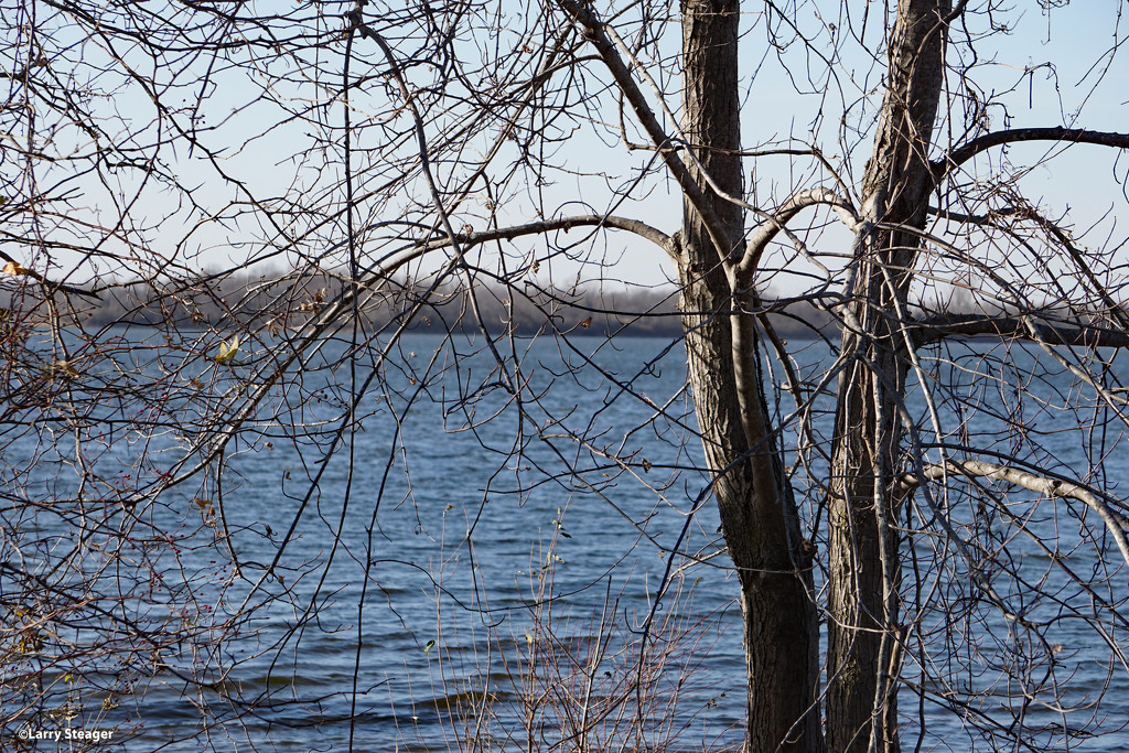 Lake view by larrysphotos