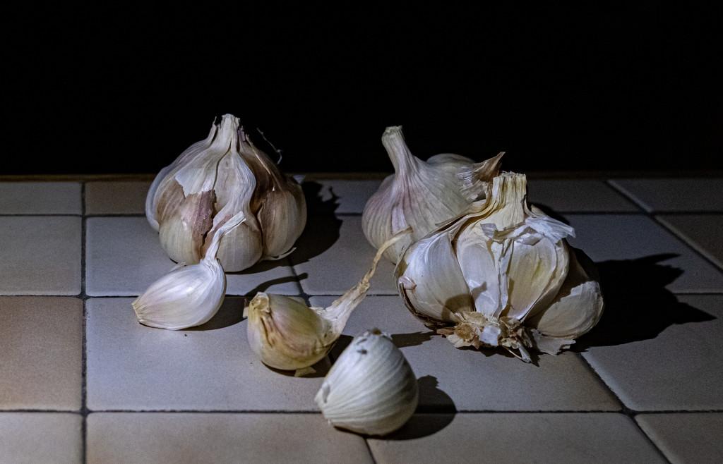 Garlic... by vignouse