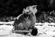 24th Nov 2020 - Puff the Magic Dragon