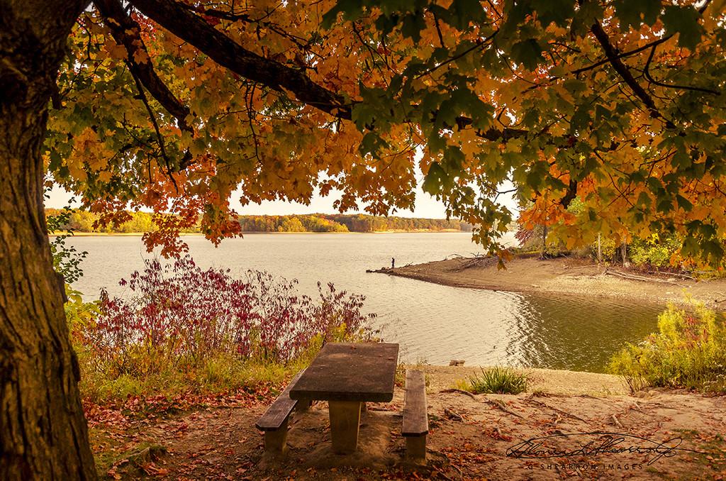 Fall Grandeur at Redbank by ggshearron