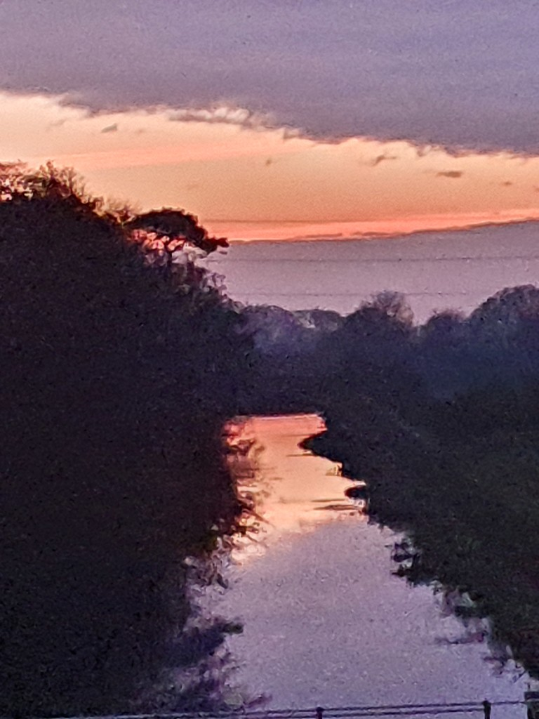 Evening light  by pinkpaintpot