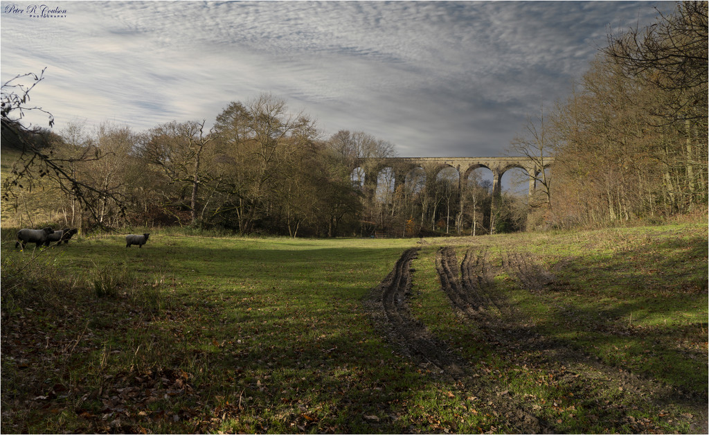 Railway Viaduct by pcoulson