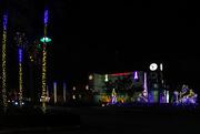 27th Nov 2020 - Holiday tree lighting