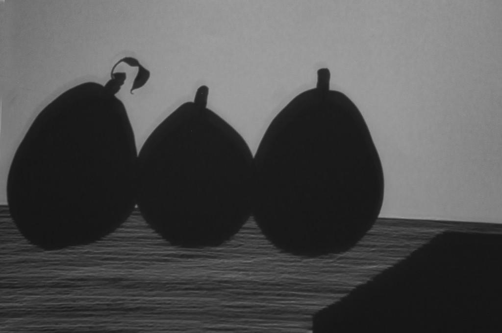 Shadow Play - Three Pears by granagringa