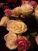 21st Nov 2020 - Roses.