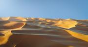 27th Nov 2020 - CG Cookie Dunes