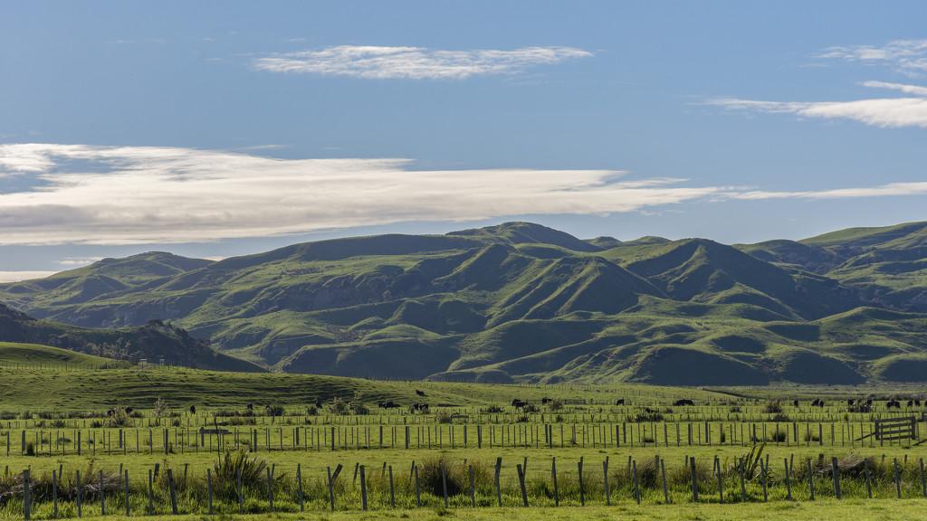 Hills by nickspicsnz