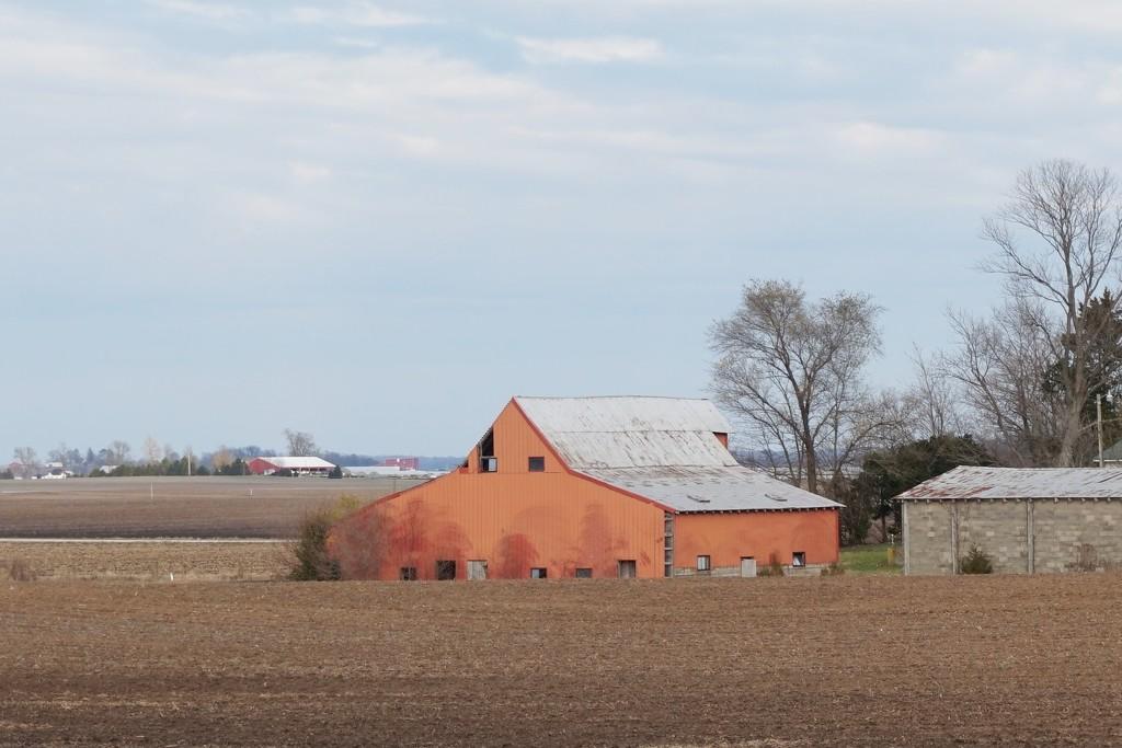 An orange barn? by tunia