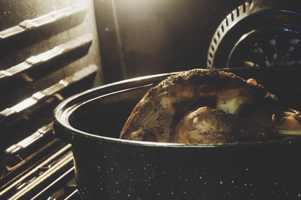 045 - Turkey Day by emrob
