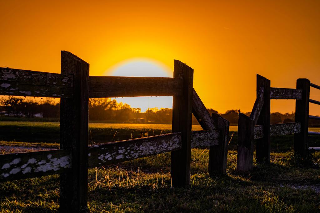 Sunset in farmland Sarasota. by dutchothotmailcom