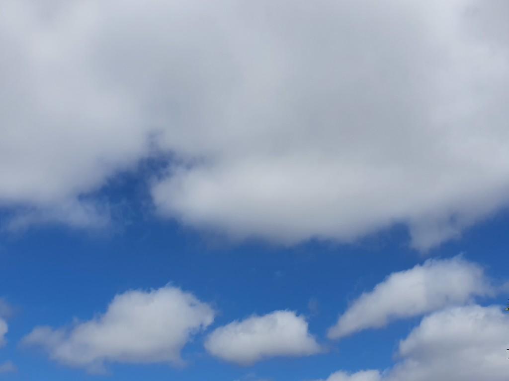 20201123_101419 sky by summeradelaide