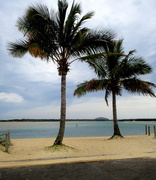 28th Nov 2020 - Near the Mouth of the Maroochy River