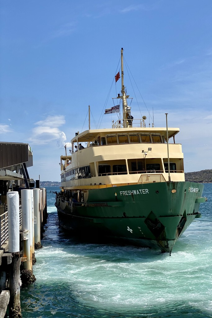 """Manly ferry """"Freshwater"""" docking at Manly by johnfalconer"""