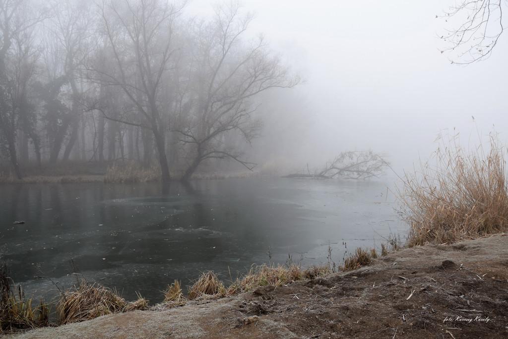 Lakeside silence by kork