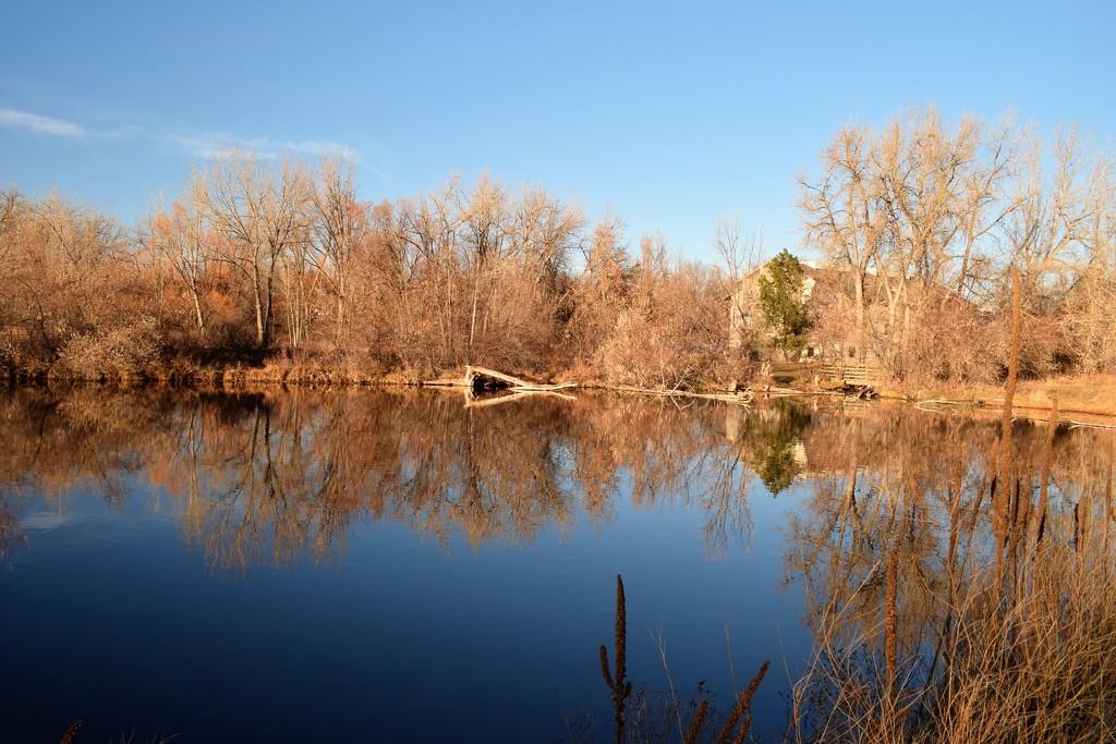 Red Fox Meadows pond by sandlily