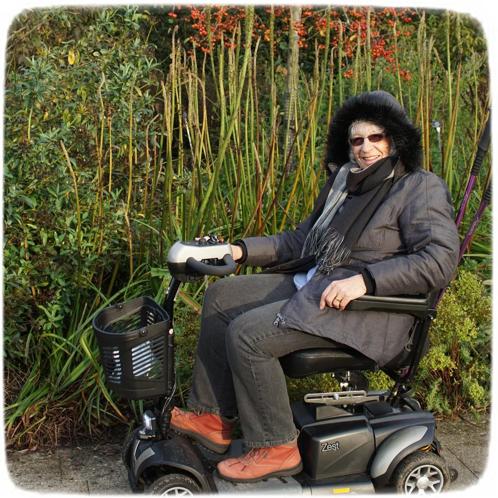 at Hilliers Arboretum by quietpurplehaze