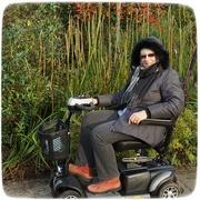 29th Nov 2020 - at Hilliers Arboretum