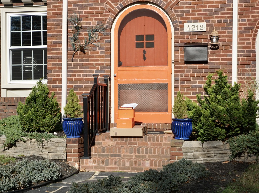 Packages Color-Coordinated with Front Door by allie912