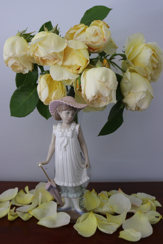 Drooping roses by gilbertwood
