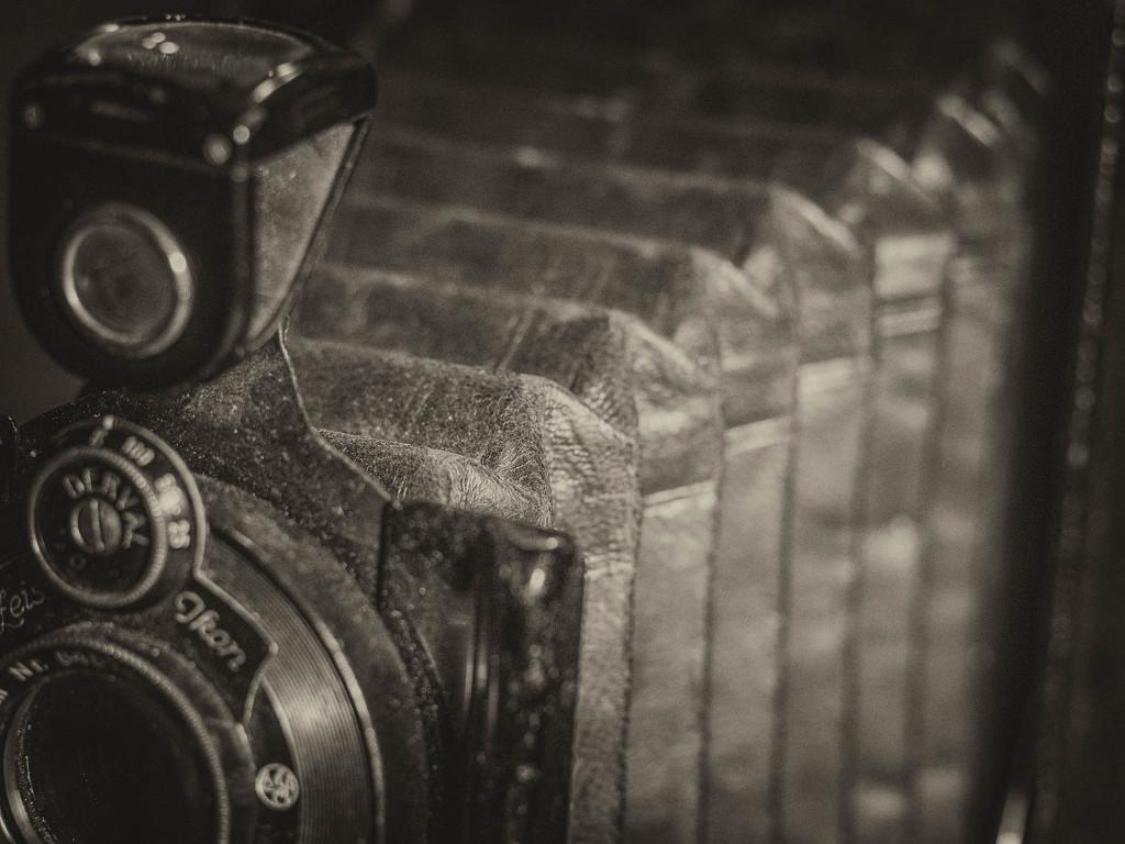 An old camera by haskar