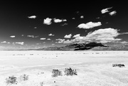 29th Nov 2020 - Texas Salt Flat by Guadalupe NP