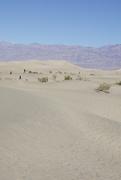 29th Nov 2020 - Dunes