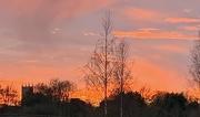 30th Nov 2020 - Marmalade Sky
