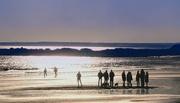 29th Nov 2020 - Autumn beach