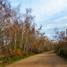 Our nature reserve