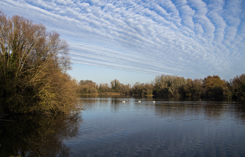 Milton Country Park by mave