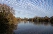 30th Nov 2020 - Milton Country Park