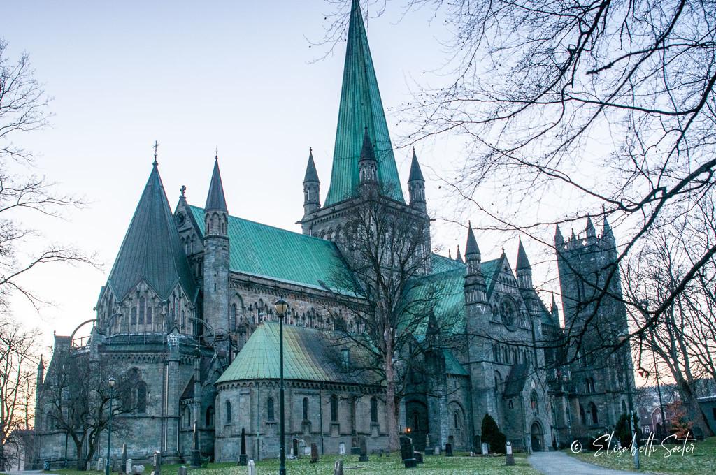 Nidaros Cathedral by elisasaeter