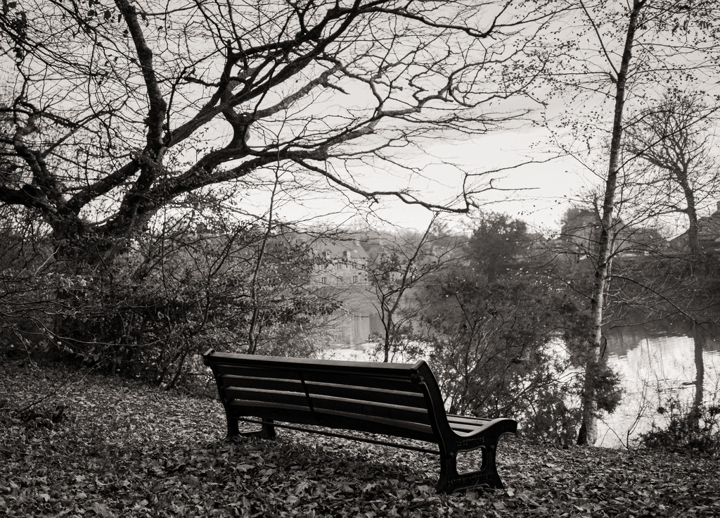 Bench with a view... by vignouse