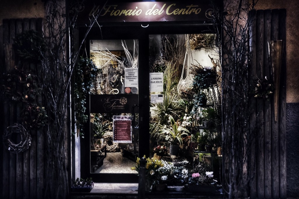 The flower shop by caterina