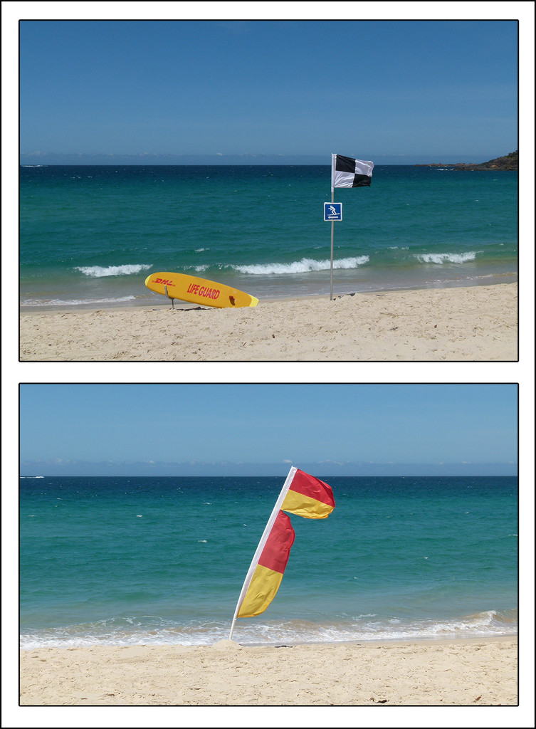 Lifeguard Flags by onewing