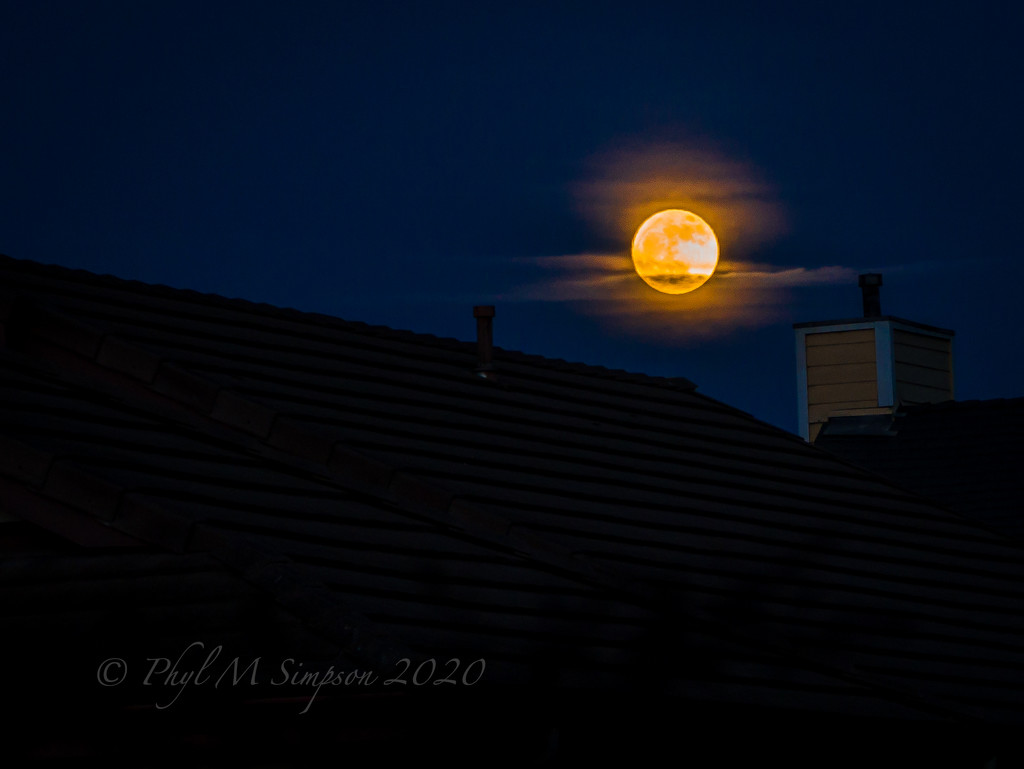 Don't Wait For A Blue Moon to... by elatedpixie