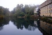 29th Nov 2020 - Mill Pond