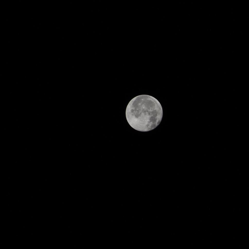 December 1st Full Moon by bjywamer