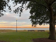 1st Dec 2020 - Waterfront Park, Charleston, at sunset