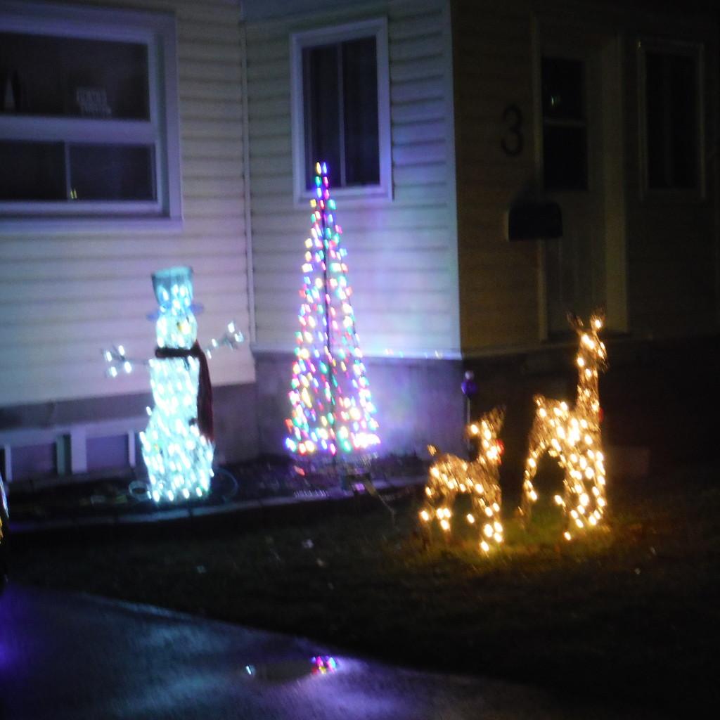 Christmas Lights Day by spanishliz
