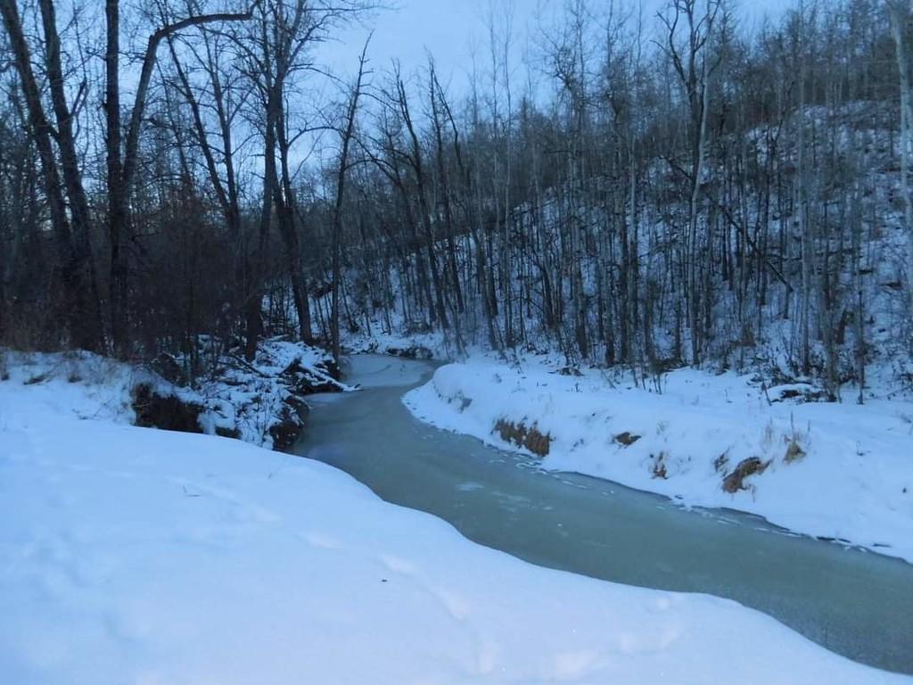 Mill Creek  by bkbinthecity