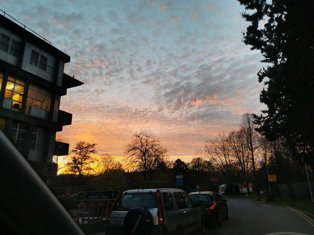 Sunset  by tiredpanda
