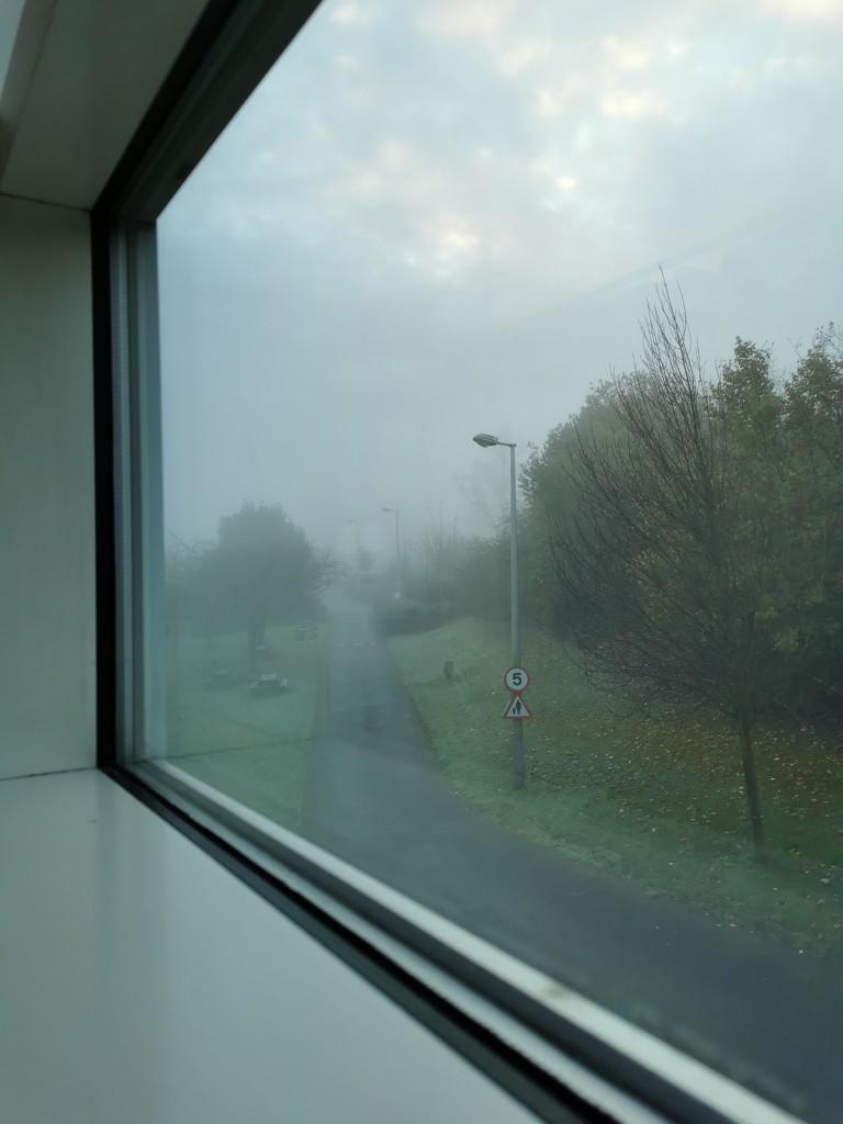 Fog by tiredpanda