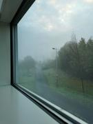 27th Nov 2020 - Fog