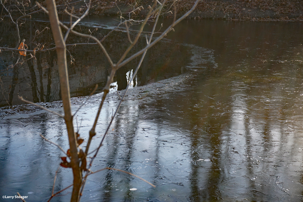 Ice forming on the pond by larrysphotos