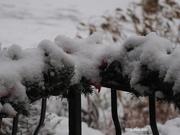 1st Dec 2020 - First Snow